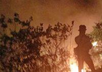 Seluas 7 Hektare Hutan dan Lahan di Aceh Terbakar